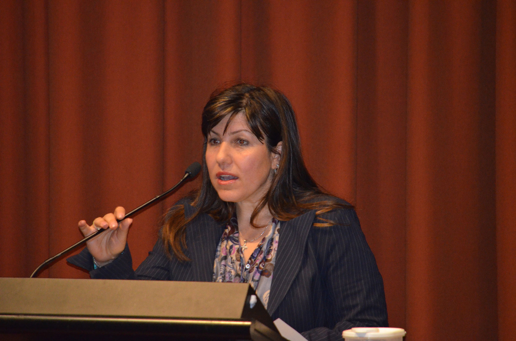 04 Symposium 6th Dec 2012. Sophie Cotsis Mlc
